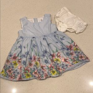 GAP Toddler Dress